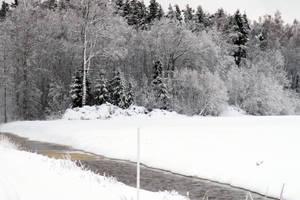 Winter 279 by MASYON