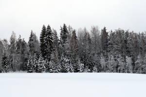 Winter 280 by MASYON