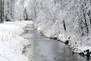 Winter 283 by MASYON