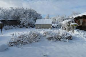 Moisakula winter 545 by MASYON