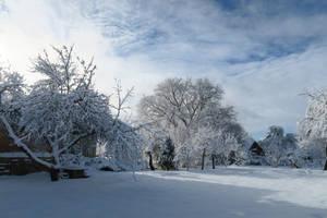 Moisakula winter 549 by MASYON