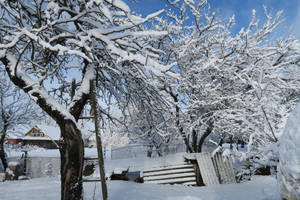 Moisakula winter 551 by MASYON