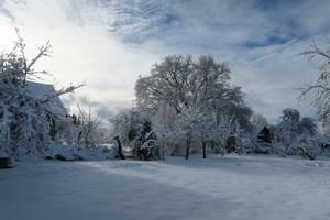 Moisakula winter 552 by MASYON