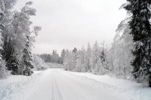 Winter 249 by MASYON