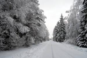 Winter 250 by MASYON