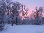 Winter 291