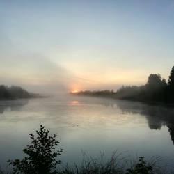 Fog 396