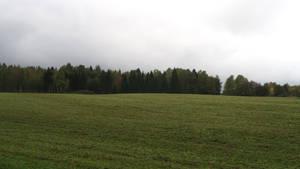 Autumn 858