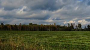 Autumn 896