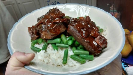 Orange beef over green beans and rice by MagarahTezerra