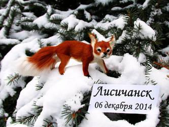 Fox on fir-tree by 7ix