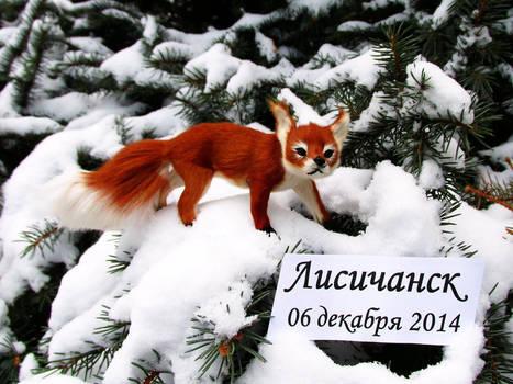 Fox on fir-tree