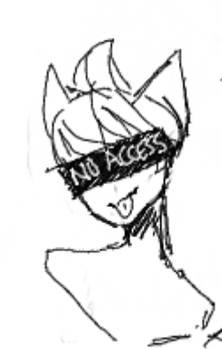 no access neko