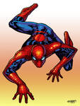 Crawling Spider-Man-Colors