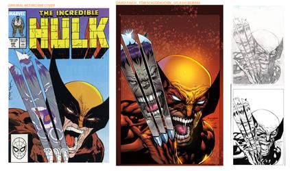 Hulk Wolverine Remake-old-new by SplashColors