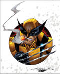 Wolvie by San Colors