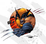 Wolvie by San Colors 2