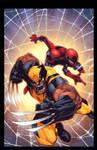 Savage Wolverine by Joe Mad! Colors by Splash!
