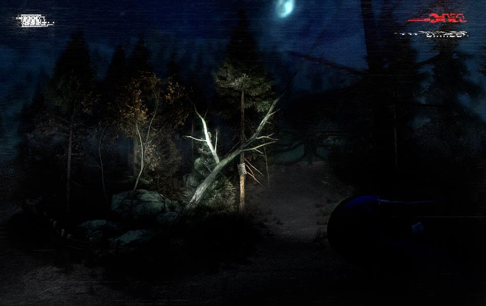 Slender: The Arrival #2