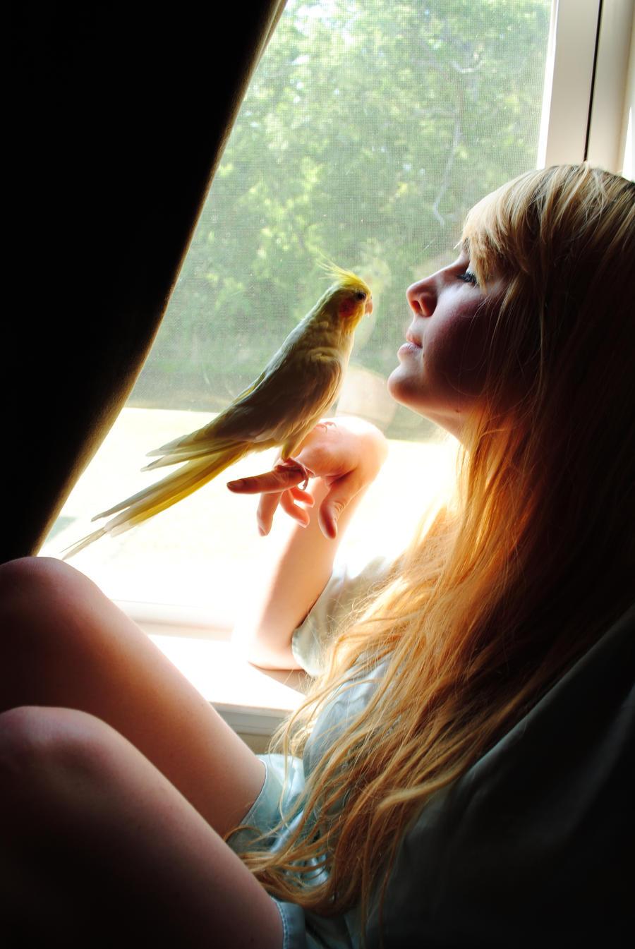 Girl with a Bird Stock