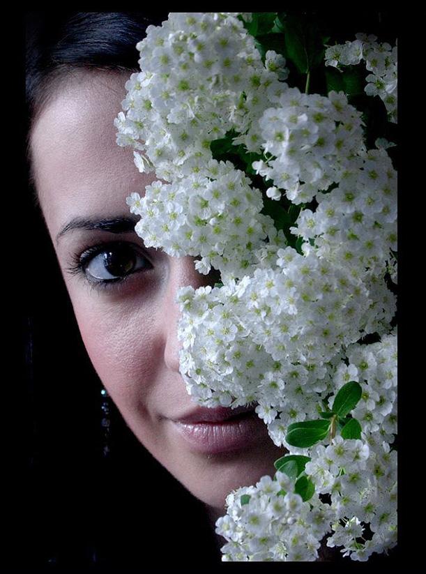 Verrr's Profile Picture