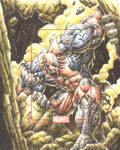 Marvel card AP Hulkpool