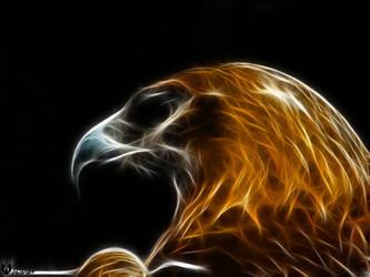 Golden Eagle II by alucard07