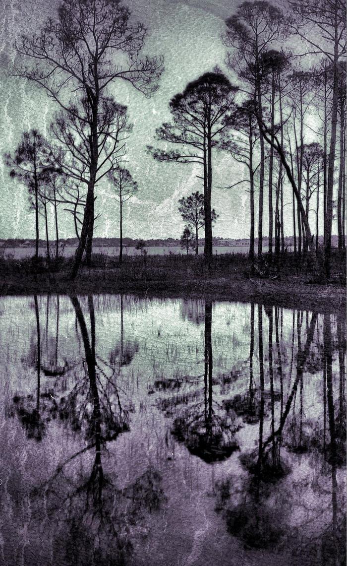 Yggdrasil by BreezySkink