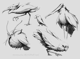 Birds by Samrausku