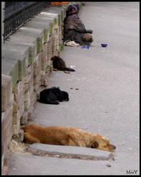 Homeless by Maay