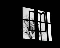 Oh Dear Solitude by alucinogenos