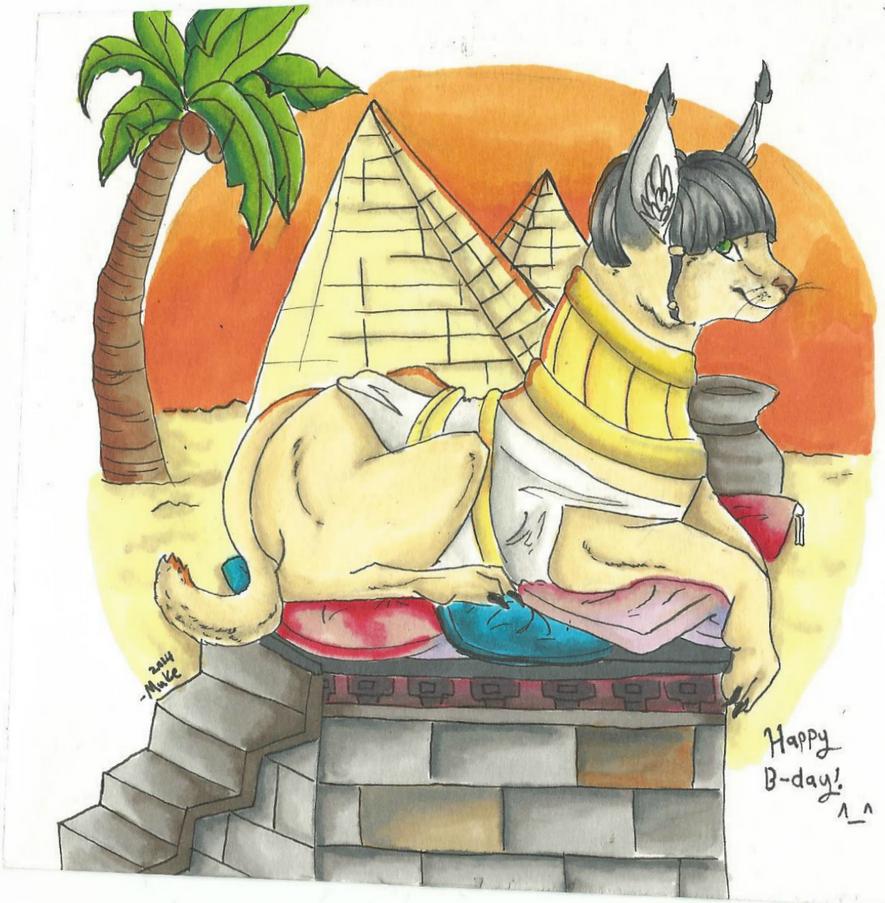 Zedna by Muketti