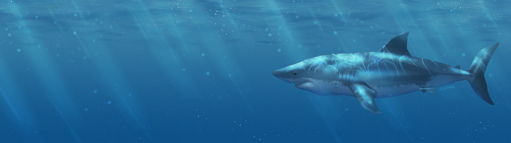 Hai Shark Dual Screen Wallpaper 3840x2160 By Holzeisenbahn
