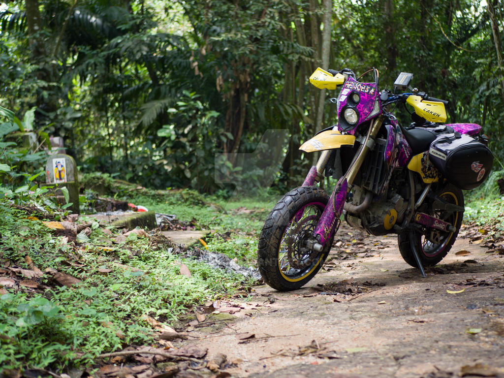 Jungle DRZ 400 SM by raveka