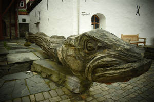 Norwegian's Loch Ness Monster? by jajafilm