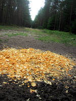 Salt chips by jajafilm