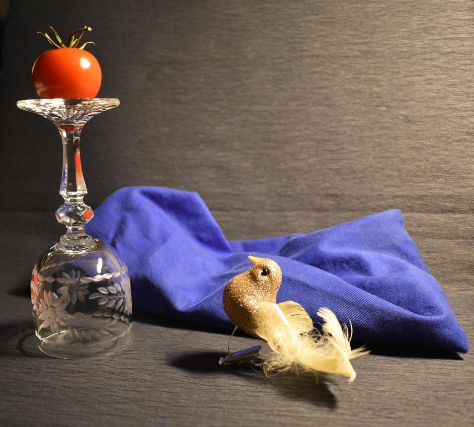 Bird and tomato by jajafilm