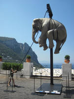 Elephant by jajafilm
