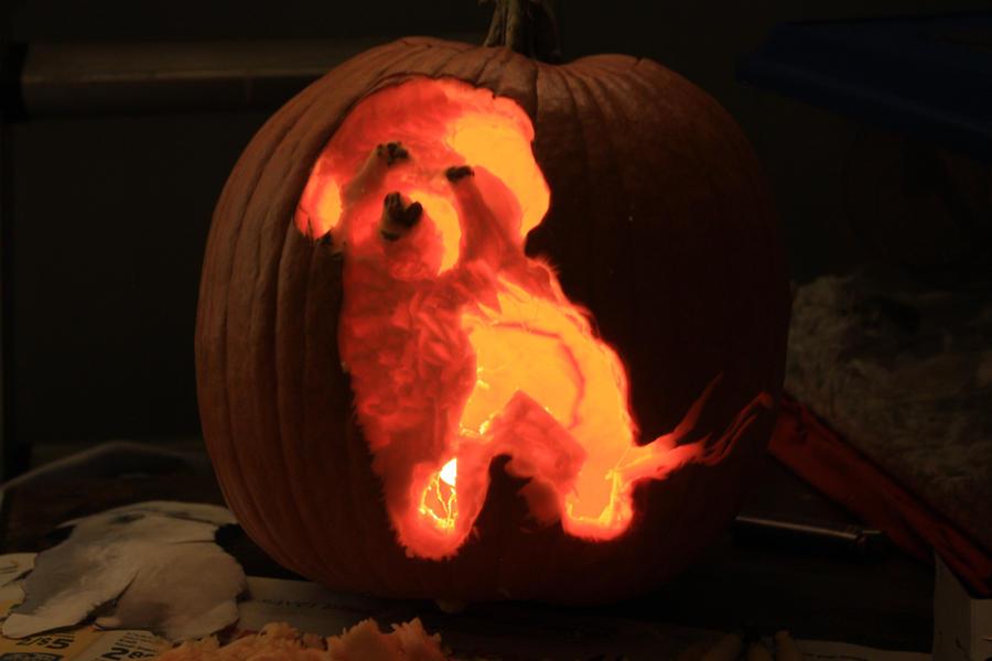 charlie dog pumpkin carving by skimlines on deviantart
