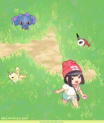 Tall Grass Walk