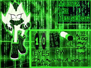 New Character Matrix the hedgehog by xXAlshaniXx