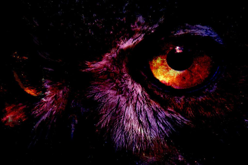 Cosmic Owl by hermione4g