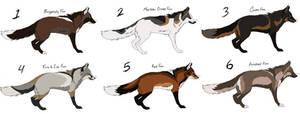 Fox Adoptables