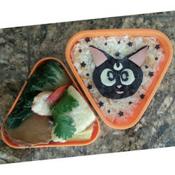 Luna lunch box! by susanlin
