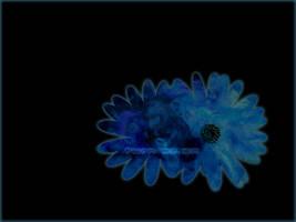 turn me on little blue flowers by redbandana