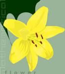 Mathematical Flower