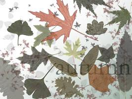 Autumn Leaves - Opacity Fun by redbandana