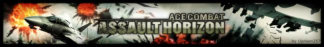 Ace Combat Banner