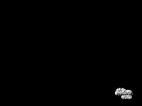 Encore Action Screen Bug Template (2005-08)
