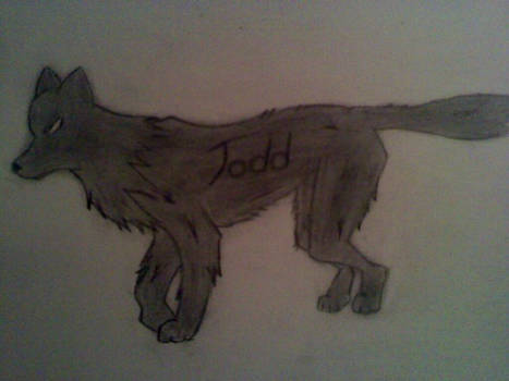 Another Wolf Doodle